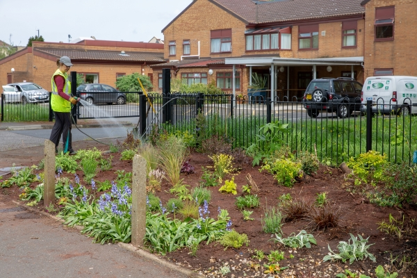 September news from St George in Bloom